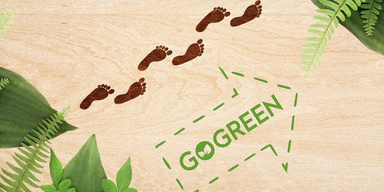 Nachhaltigkeit, oechsle, werba, go green