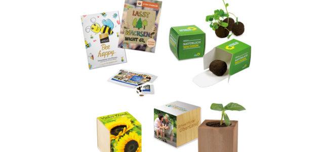 emotion factory grüne nachhaltige Verpackungen